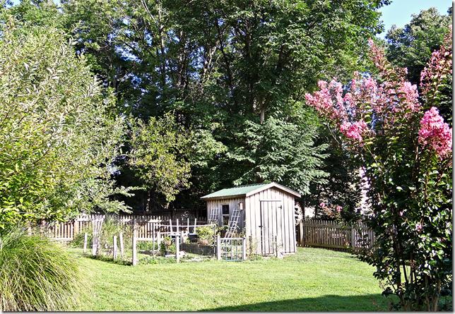 Backyard 8.27